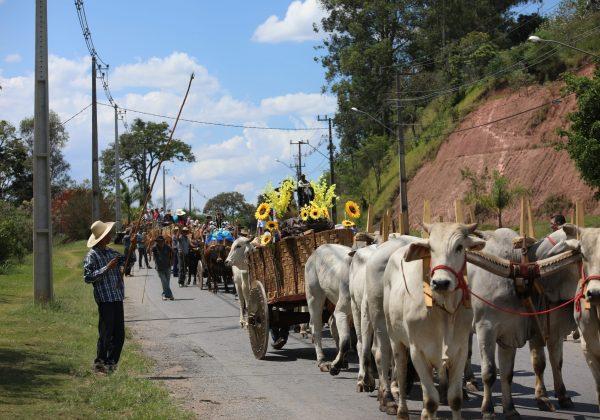 Domingo 100% caipira com Desfile de Carros de Boi